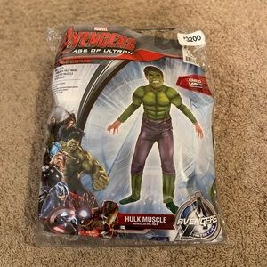 Marvel Avengers Age Of Ultron Hulk Muscle Costume!